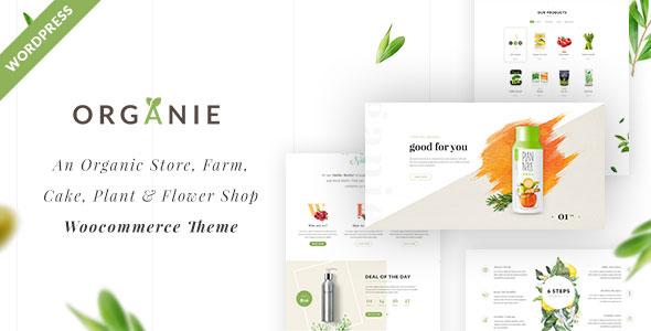 Organie Organic Food Store