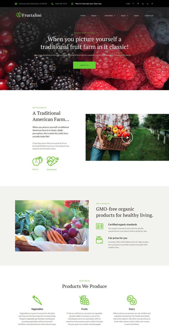 fruttalini organic fruit farm wordpress theme