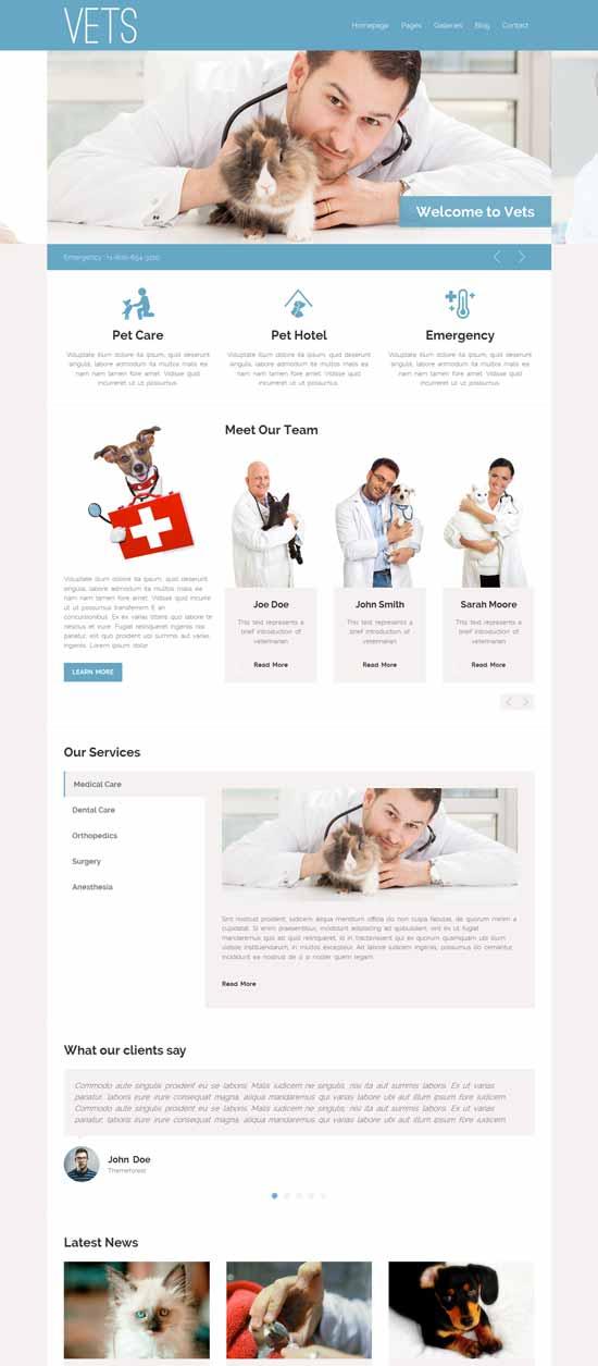 VETS - Pet Clinic WP Theme