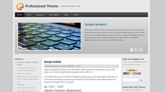 professiona-free-drupal-theme