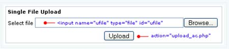 Upload and Rename File