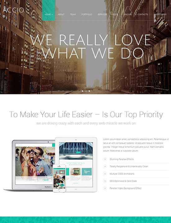 Accio-One-Page-Parallax-Responsive-WordPress-Theme