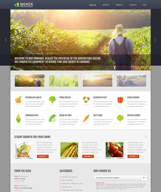 Agriculture-Business-WordPress-Theme