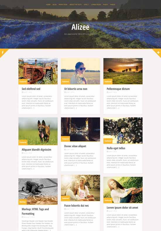 Alizee-Free-responsive-wordpress-theme-with-Bootstrap