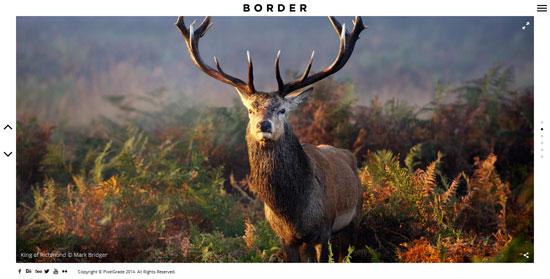 BORDER-Delightful-Photography-WordPress-Theme