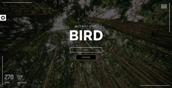 Birdman-Responsive-Coming-Soon-Page