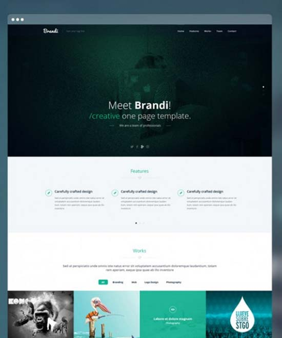 Brandi-Creative-One-Page-Multi-Purpose-PSD-Template