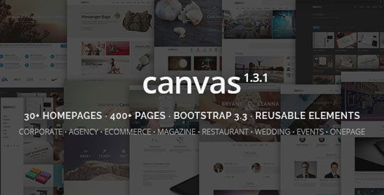 Canvas-best-website-template-2015