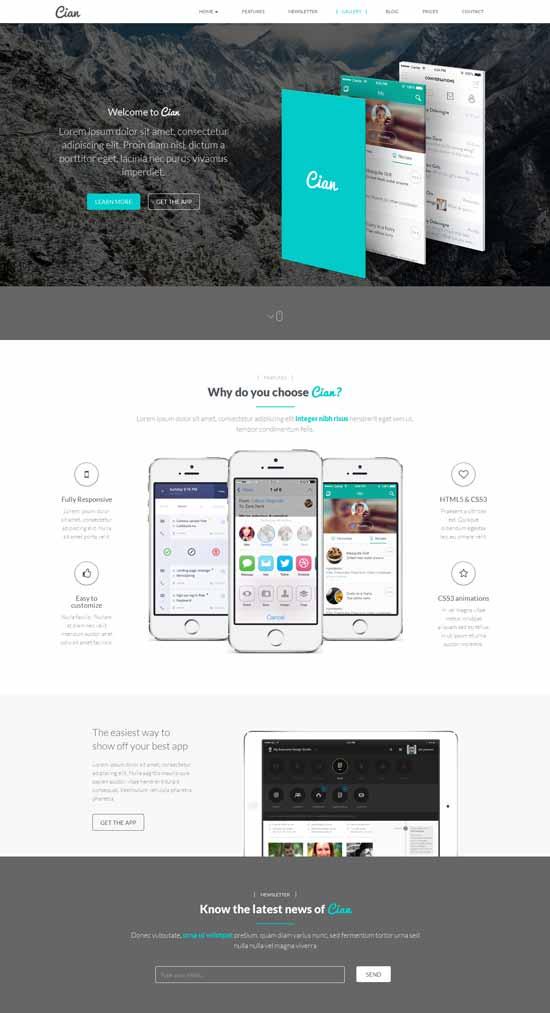 Cian-App-Landing-Page-Wordpress