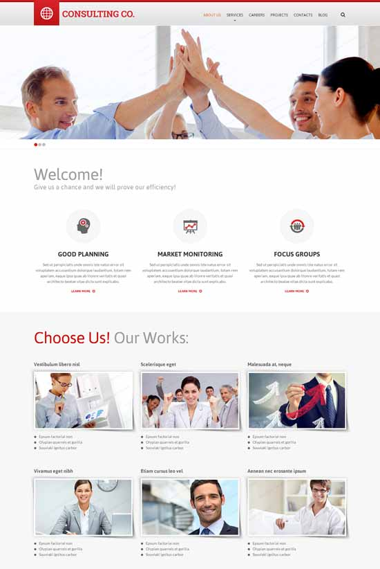 Consulting-Co-Consulting-Responsive-Website-Template