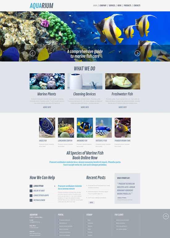 Fish-Responsive-WordPress-Theme