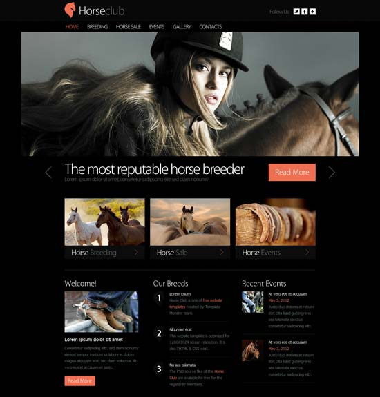 Free-Horse-Club-Website-Template