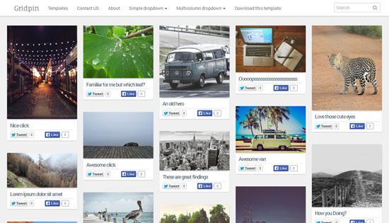 Grid-Pin-Responsive-Masonry-Photography-Blogger-Template