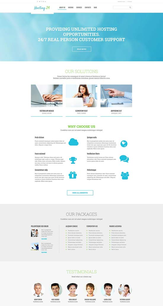 Hosting-Responsive-WordPress-Theme-54791