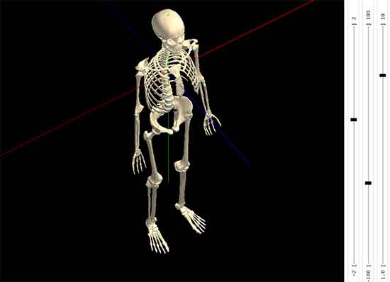 Interactive-3D-Skeleton html5 animation