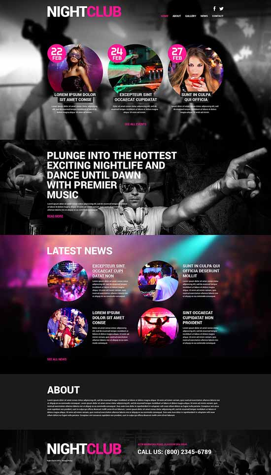 Night-Club-Euphoria-WordPress-Theme