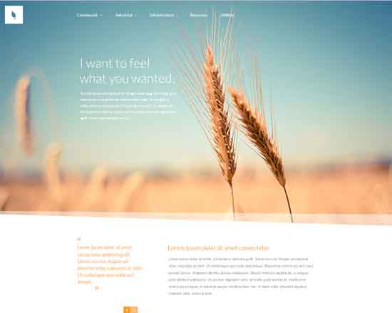 Organic - Free Website PSD Template