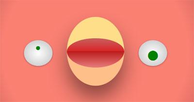 PIO-single-element-border-animation