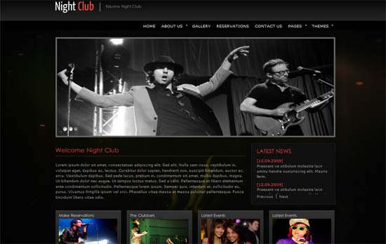 Party Night Website template