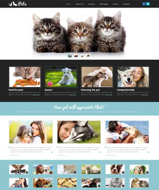 Pet-Shop-Responsive-Website-Template