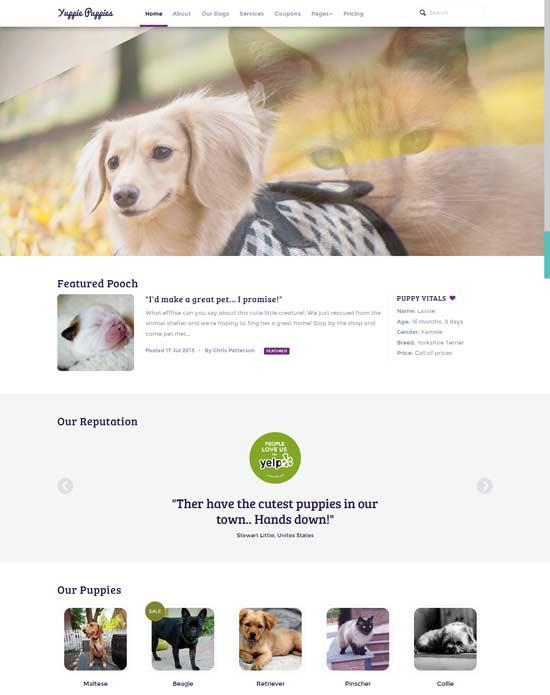 PetshopResponsive-Pet-Friendly-Theme