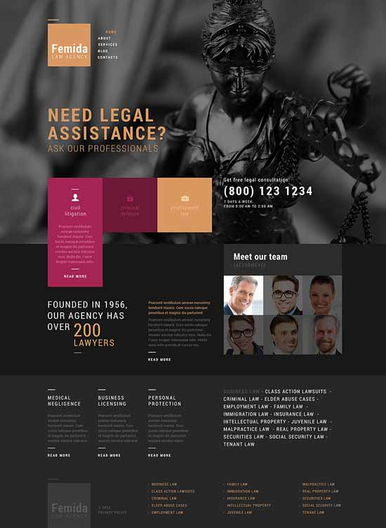 Public-Justice-Agency-WordPress-Theme
