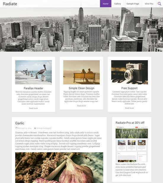 Radiate-Free-clean-Creative-Blogging-Theme