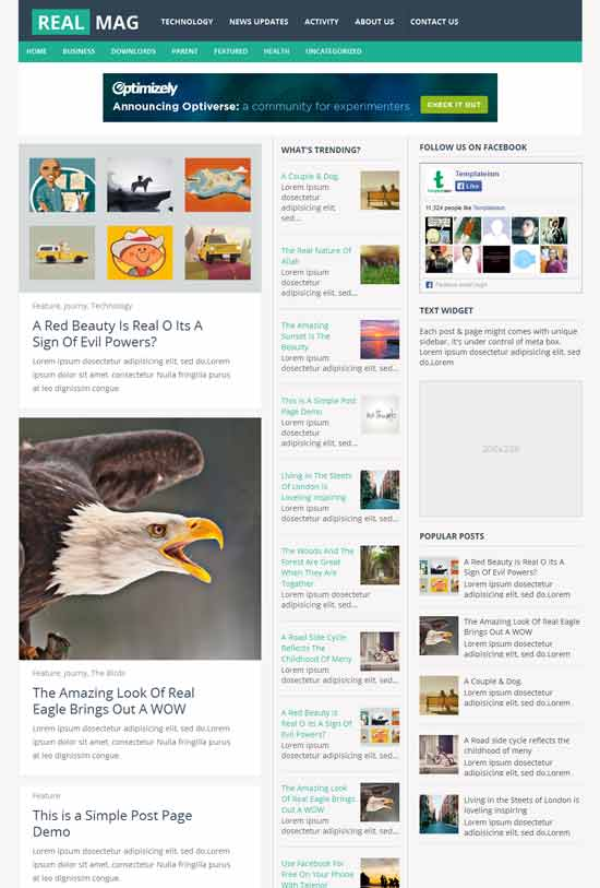 RealMag-Free-Magazine-Responsive-Blogger-Template