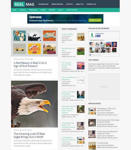 RealMag-free-professional-blogger-template