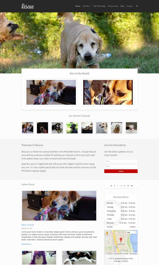 Rescue-Animal-Shelter-wordpress-Theme