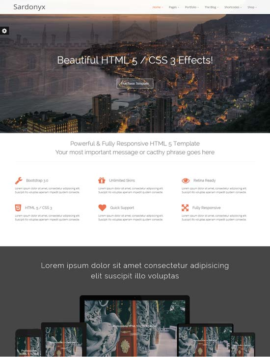 Sardonyx-Fully-Responsive-Business-Template