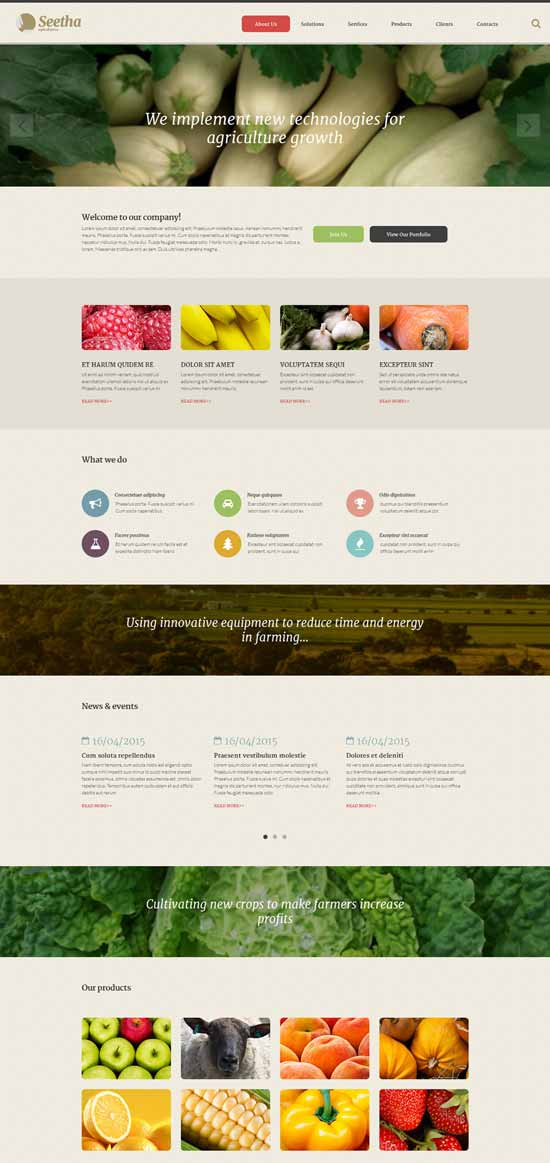 Seetha-Website-Template