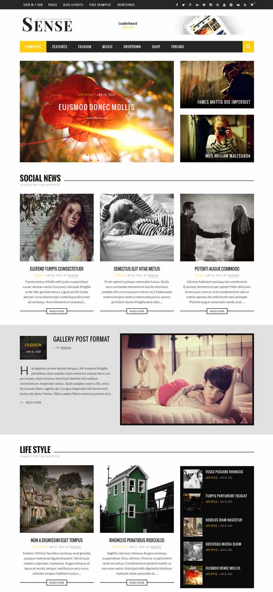 Sense-Blog-Magazine-News-Theme