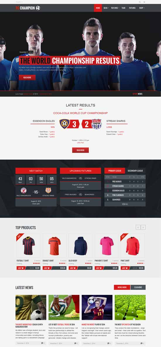 Soccer-Football-WordPress-Theme