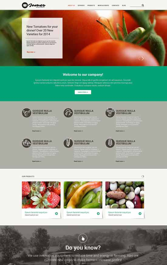 Vegetable-Responsive-Website-Template