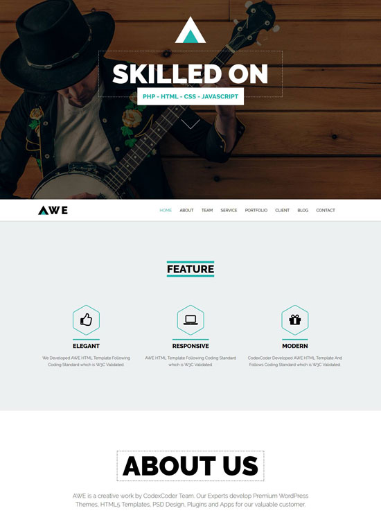 awe one page business wordpress theme
