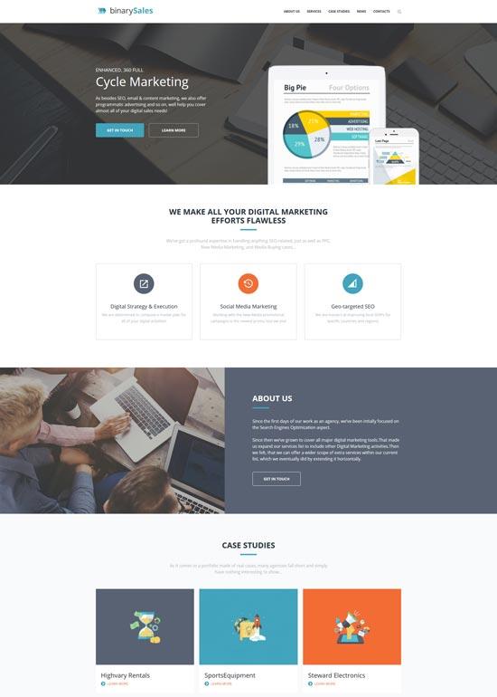 binarysales seo digital marketing wordpress theme