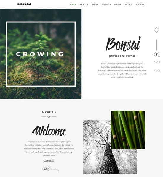 bonsai landscapers gardeners html template