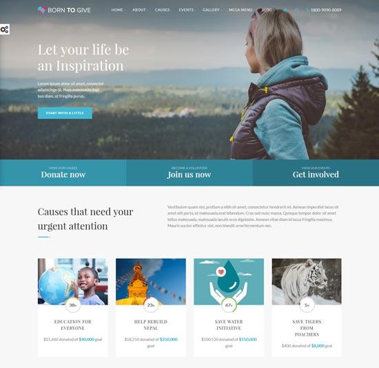 born charity responsive WordPress theme