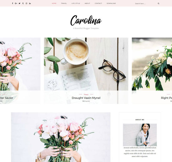 carolina blogger personal template