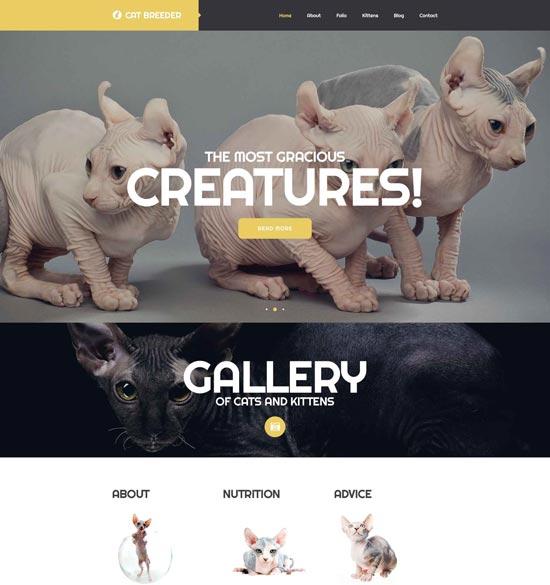 cat-breeders-website-template-52715