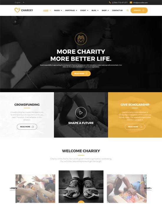 charixy charity fundraising wordpress theme