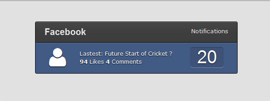 css-Facebook-Flat-Notification