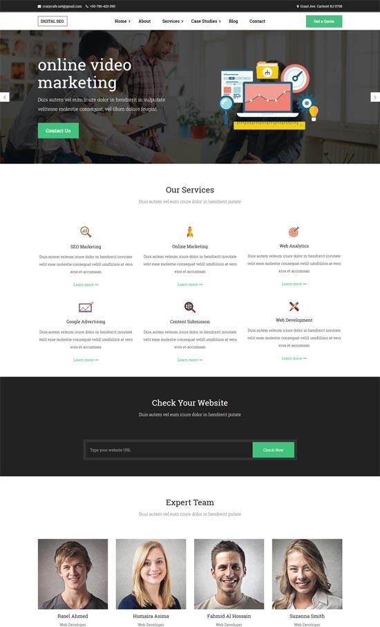 digitalseo marketing seo wordpress theme