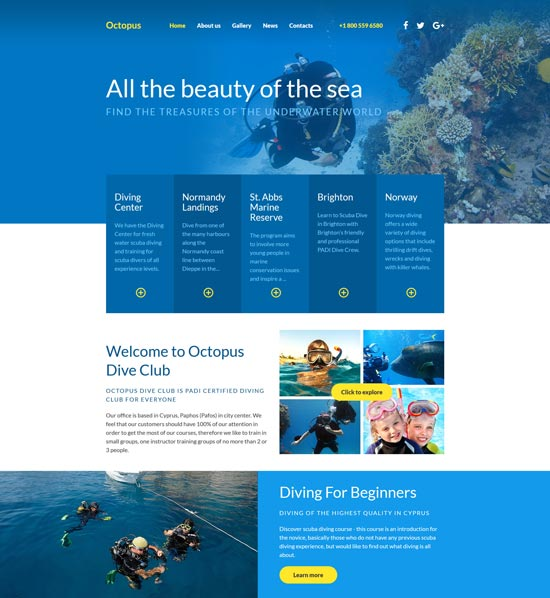 diving html website template