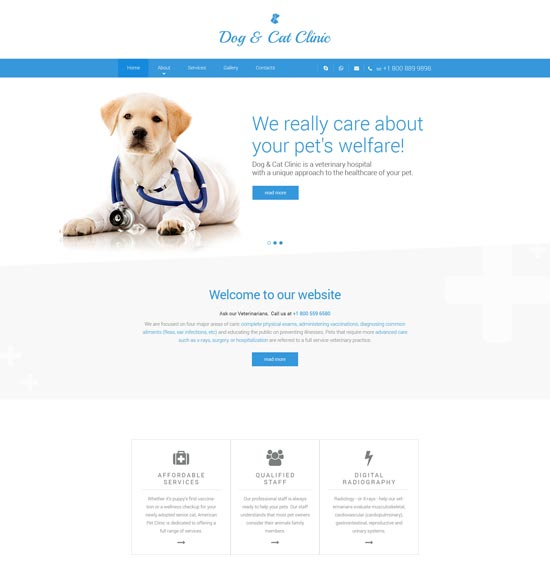 dog cat clinic website template