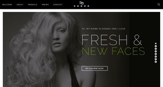 dondo model agency wp theme