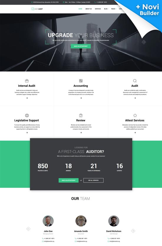 easy audit consulting website template