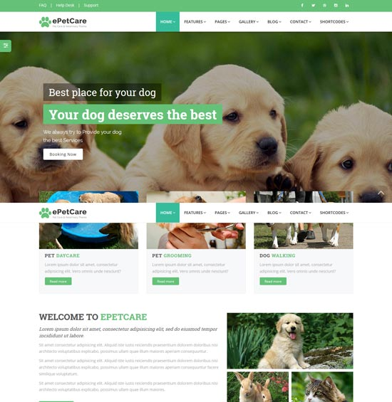 epetcare pet care html5 template