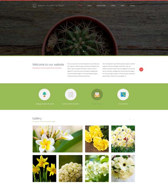 exotic-plants-website-template